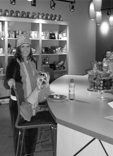 adult female bella at doggie bar